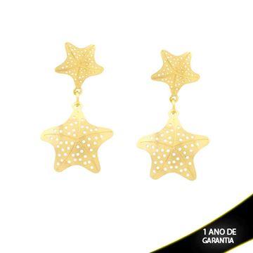 Imagem de Brinco Duas Estrelas Vazadas - 0211360