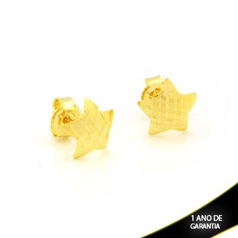 Imagem de Brinco Estrela Fosco Diamantado - 0211691